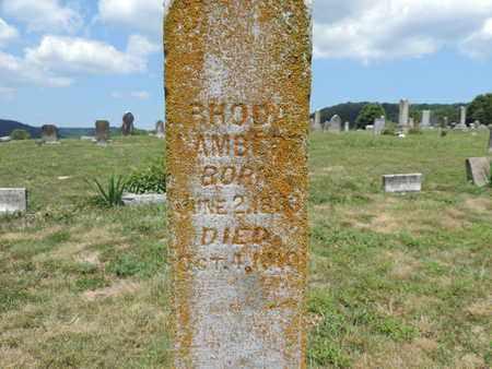 LAMBERT, RHODA - Pike County, Ohio | RHODA LAMBERT - Ohio Gravestone Photos