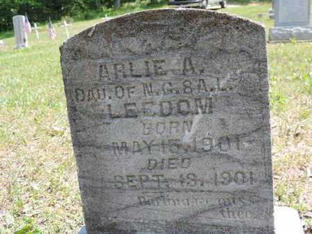 LEEDOM, ARLIE A - Pike County, Ohio | ARLIE A LEEDOM - Ohio Gravestone Photos