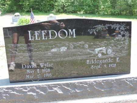 LEEDOM, DAVID WYLIE - Pike County, Ohio   DAVID WYLIE LEEDOM - Ohio Gravestone Photos