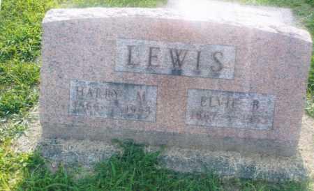 LEWIS, ELVIE B. - Pike County, Ohio | ELVIE B. LEWIS - Ohio Gravestone Photos