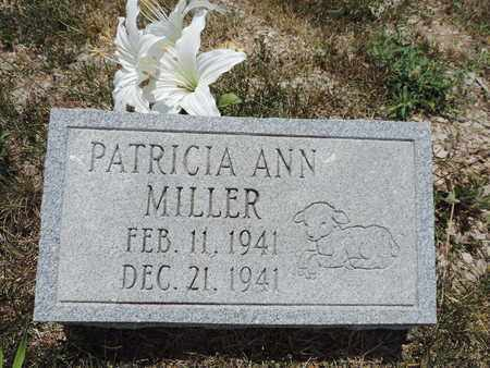 MILLER, PARICIA ANN - Pike County, Ohio   PARICIA ANN MILLER - Ohio Gravestone Photos