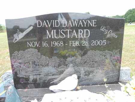 MUSTARD, DAVID DAWAYNE - Pike County, Ohio   DAVID DAWAYNE MUSTARD - Ohio Gravestone Photos