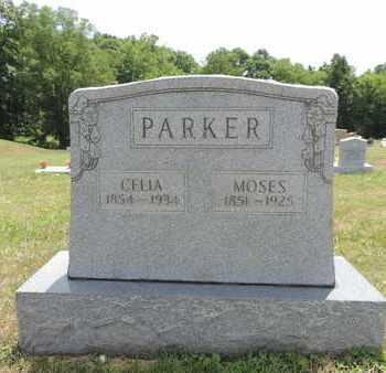 PARKER, CELIA - Pike County, Ohio | CELIA PARKER - Ohio Gravestone Photos