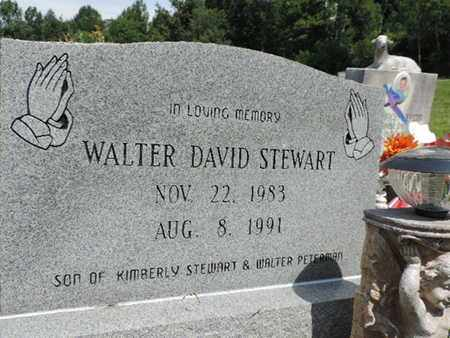 STEWART, WALTER DAVID - Pike County, Ohio | WALTER DAVID STEWART - Ohio Gravestone Photos