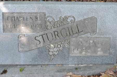 STURGILL, CHARLES R. - Pike County, Ohio | CHARLES R. STURGILL - Ohio Gravestone Photos