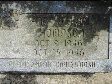 THOMPSON, JANET - Pike County, Ohio | JANET THOMPSON - Ohio Gravestone Photos