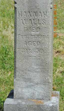 WALLS, HANNAH - Pike County, Ohio | HANNAH WALLS - Ohio Gravestone Photos