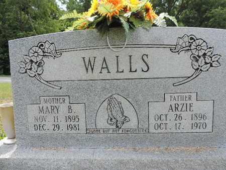 WALLS, MARY B. - Pike County, Ohio | MARY B. WALLS - Ohio Gravestone Photos