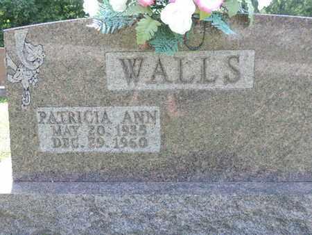 WALLS, PATRICIA ANN - Pike County, Ohio   PATRICIA ANN WALLS - Ohio Gravestone Photos