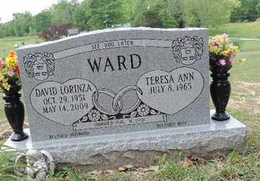 WARD, DAVID LORINZA - Pike County, Ohio | DAVID LORINZA WARD - Ohio Gravestone Photos