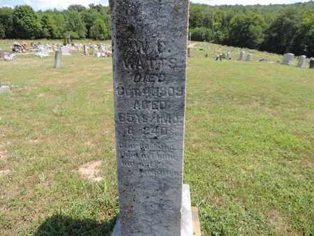 WATTS, W. E. - Pike County, Ohio | W. E. WATTS - Ohio Gravestone Photos