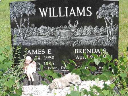 WILLIAMS, JAMES E. - Pike County, Ohio | JAMES E. WILLIAMS - Ohio Gravestone Photos