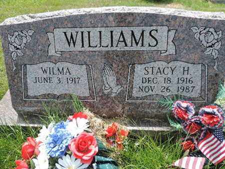 WILLIAMS, STACY H. - Pike County, Ohio | STACY H. WILLIAMS - Ohio Gravestone Photos