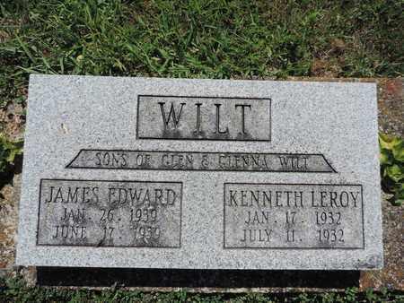 WILT, KENNETH LEROY - Pike County, Ohio | KENNETH LEROY WILT - Ohio Gravestone Photos