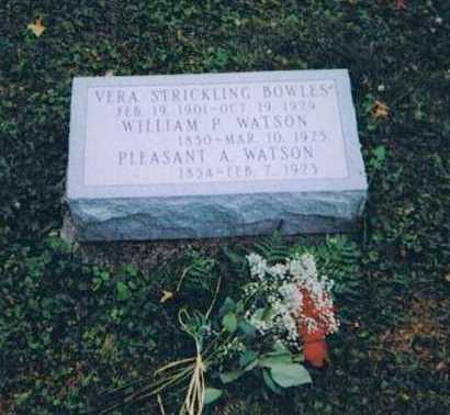 STRICKLING BOWLES, VERA MAY - Portage County, Ohio | VERA MAY STRICKLING BOWLES - Ohio Gravestone Photos