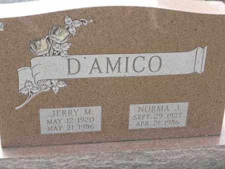 D'AMICO, NORMA J - Portage County, Ohio | NORMA J D'AMICO - Ohio Gravestone Photos