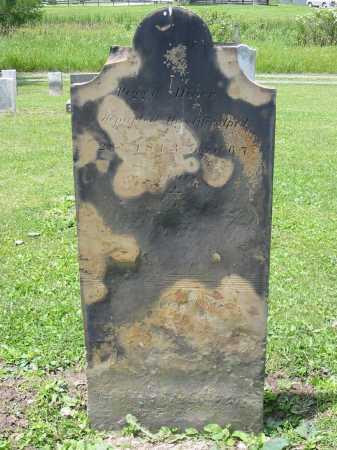 DIVER, PEGGY - Portage County, Ohio | PEGGY DIVER - Ohio Gravestone Photos