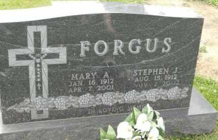 FORGUS, STEPHEN J - Portage County, Ohio   STEPHEN J FORGUS - Ohio Gravestone Photos