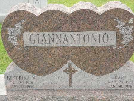GIANNANTONIO, HENDRINA M - Portage County, Ohio   HENDRINA M GIANNANTONIO - Ohio Gravestone Photos
