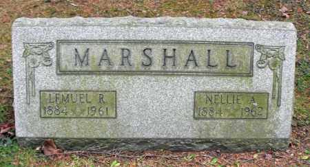 NASH MARSHALL, NELLIE ABIGAIL - Portage County, Ohio | NELLIE ABIGAIL NASH MARSHALL - Ohio Gravestone Photos