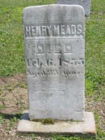 MEADS, HENRY - Portage County, Ohio | HENRY MEADS - Ohio Gravestone Photos