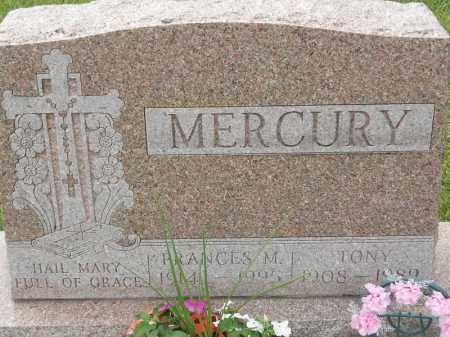 MERCURY, FRANCES M - Portage County, Ohio | FRANCES M MERCURY - Ohio Gravestone Photos