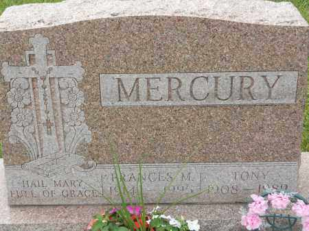 MERCURY, TONY - Portage County, Ohio | TONY MERCURY - Ohio Gravestone Photos