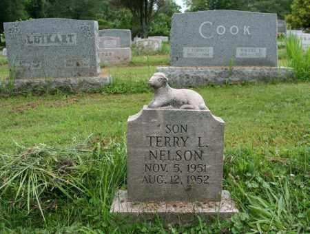 NELSON, TERRY L. - Portage County, Ohio | TERRY L. NELSON - Ohio Gravestone Photos