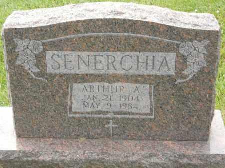 SENERCHIA, ARTHUR A - Portage County, Ohio | ARTHUR A SENERCHIA - Ohio Gravestone Photos