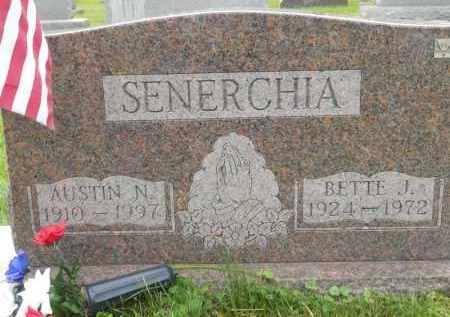 SENERCHIA, BETTE J - Portage County, Ohio | BETTE J SENERCHIA - Ohio Gravestone Photos