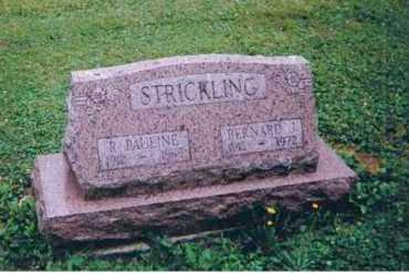STRICKLING, BERNARD JOHN - Portage County, Ohio | BERNARD JOHN STRICKLING - Ohio Gravestone Photos