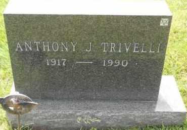 TRIVELLI, ANTHONY J - Portage County, Ohio | ANTHONY J TRIVELLI - Ohio Gravestone Photos