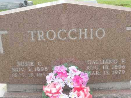 TROCCHIO, SUSIE C - Portage County, Ohio | SUSIE C TROCCHIO - Ohio Gravestone Photos