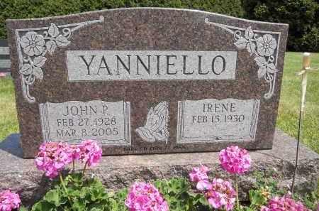 YANNIELLO, JOHN P - Portage County, Ohio | JOHN P YANNIELLO - Ohio Gravestone Photos