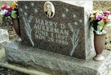 AUKERMAN, HARRY D. - Preble County, Ohio | HARRY D. AUKERMAN - Ohio Gravestone Photos