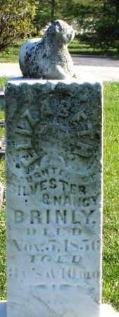 BRINLEY/BRINLY, ELIZABETH - Preble County, Ohio | ELIZABETH BRINLEY/BRINLY - Ohio Gravestone Photos