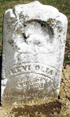 BROWN, LEVI OLIA - Preble County, Ohio | LEVI OLIA BROWN - Ohio Gravestone Photos