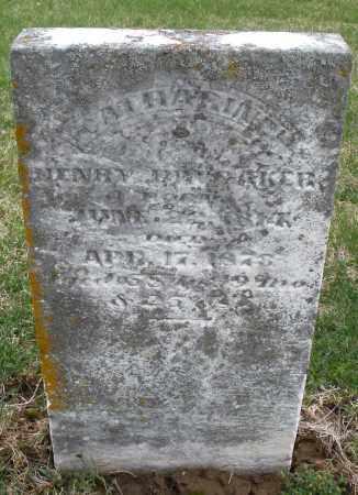 BRUBAKER, CATHARINE - Preble County, Ohio | CATHARINE BRUBAKER - Ohio Gravestone Photos