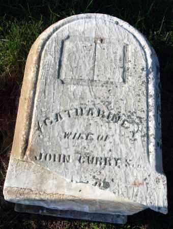 CURRY, CATHARINE - Preble County, Ohio | CATHARINE CURRY - Ohio Gravestone Photos