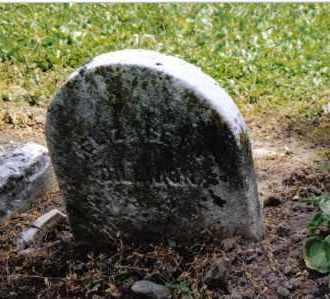 DILLMON, ELIZABETH - Preble County, Ohio | ELIZABETH DILLMON - Ohio Gravestone Photos