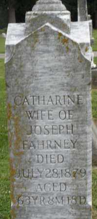 FAHRNEY, CATHARINE - Preble County, Ohio | CATHARINE FAHRNEY - Ohio Gravestone Photos