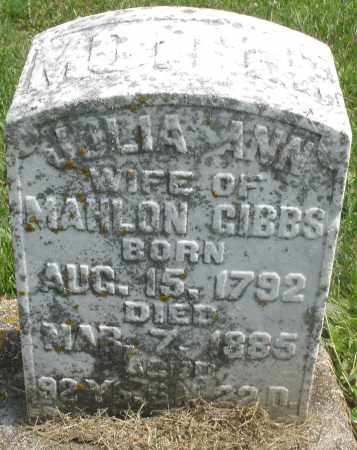 GIBBS, JULIA ANN - Preble County, Ohio | JULIA ANN GIBBS - Ohio Gravestone Photos