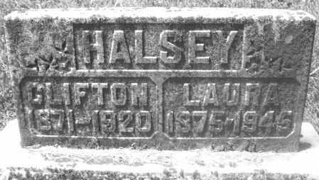 HALSEY, LAURA - Preble County, Ohio | LAURA HALSEY - Ohio Gravestone Photos