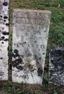 HARTER, SAMUEL - Preble County, Ohio   SAMUEL HARTER - Ohio Gravestone Photos