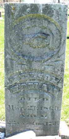 HOMAN, NELSON - Preble County, Ohio | NELSON HOMAN - Ohio Gravestone Photos