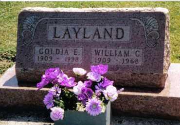 STRAW LAYLAND, GOLDIA E. - Preble County, Ohio | GOLDIA E. STRAW LAYLAND - Ohio Gravestone Photos