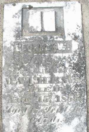 MATHEWS, GEORGE W. - Preble County, Ohio   GEORGE W. MATHEWS - Ohio Gravestone Photos