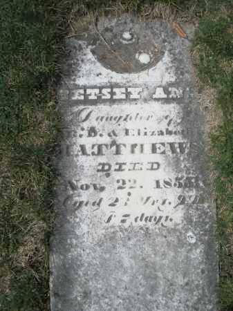 MATTHEW, BETSEY ANN - Preble County, Ohio | BETSEY ANN MATTHEW - Ohio Gravestone Photos