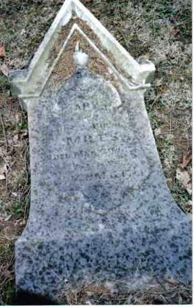 MILES, MARY J. - Preble County, Ohio | MARY J. MILES - Ohio Gravestone Photos