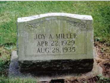 MILLER, JOY A. - Preble County, Ohio | JOY A. MILLER - Ohio Gravestone Photos